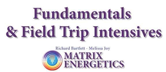 logo-matrix-energetics-scritta-singolo-evento